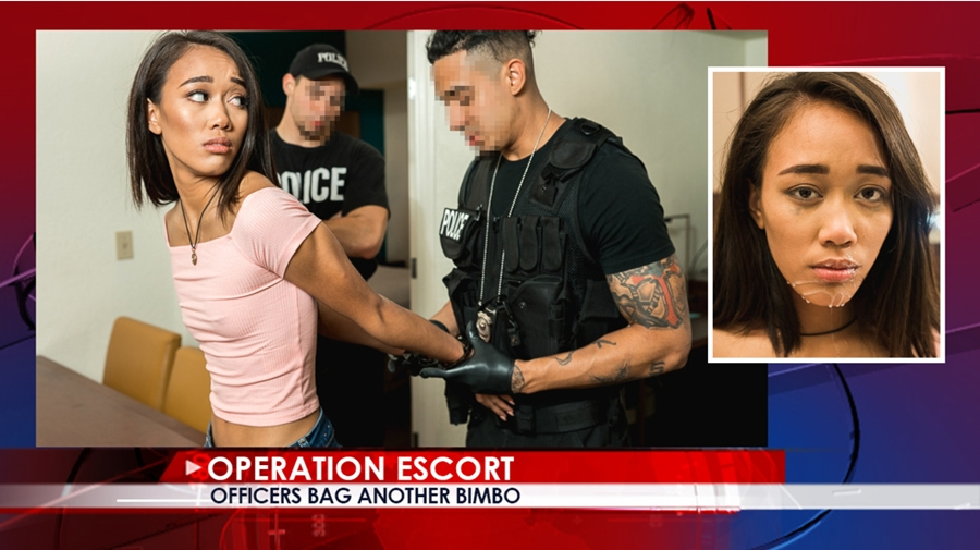 [OperationEscort.com] Aria Skye - Officers Bag Another Bimbo (15.12.2017) [2017 г., All Sex, Blowjobs, Domination, 1080p]