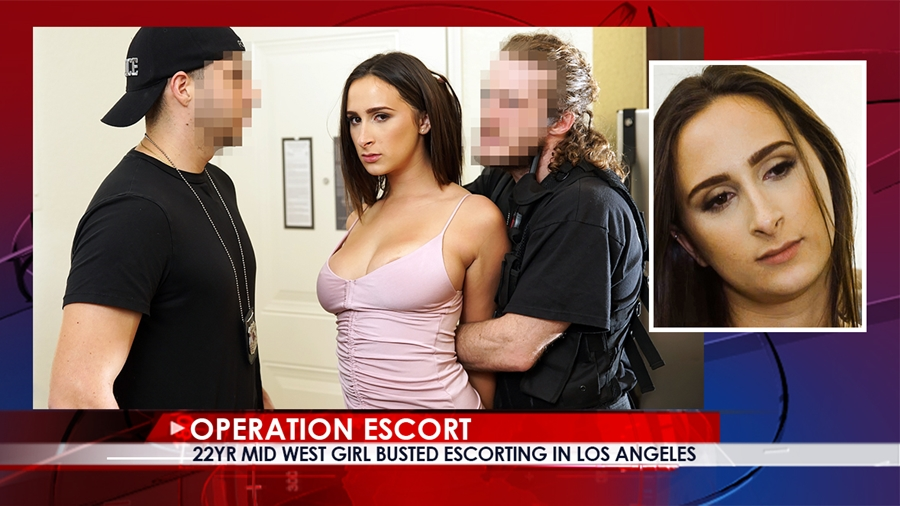 [Operationescort.com] Ashley Adams (Mid West Girl Busted Escorting in Los Angeles) [22.01.2018 г., All sex, Brunette, Blowjob, Domination, Hardcore, 480p]